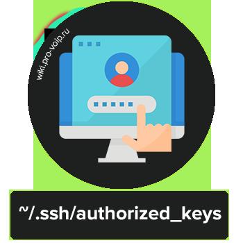 SSH авторизация по ключу в Debian