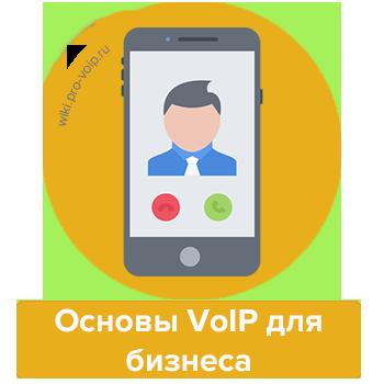 Основы VoIP для бизнеса