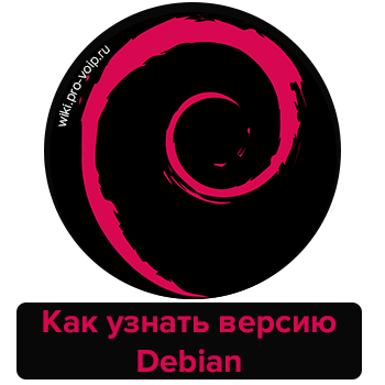 Как узнать версию Debian